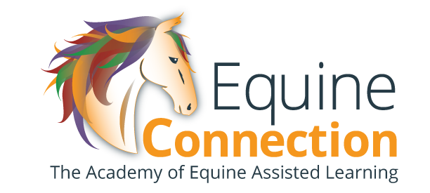 Horse Certification Course - Leading Life Edge Skills