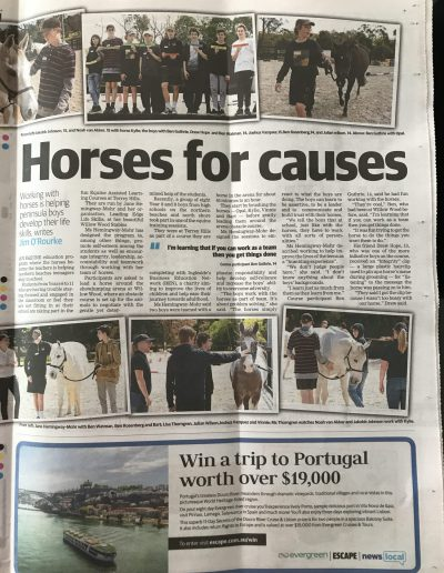 Horses for causes - Manly Daily
